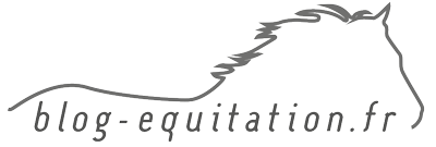 Blog Équitation